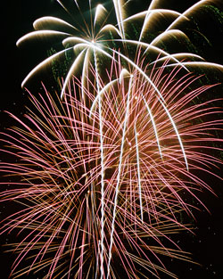 new-year-day-care-fireworks_0